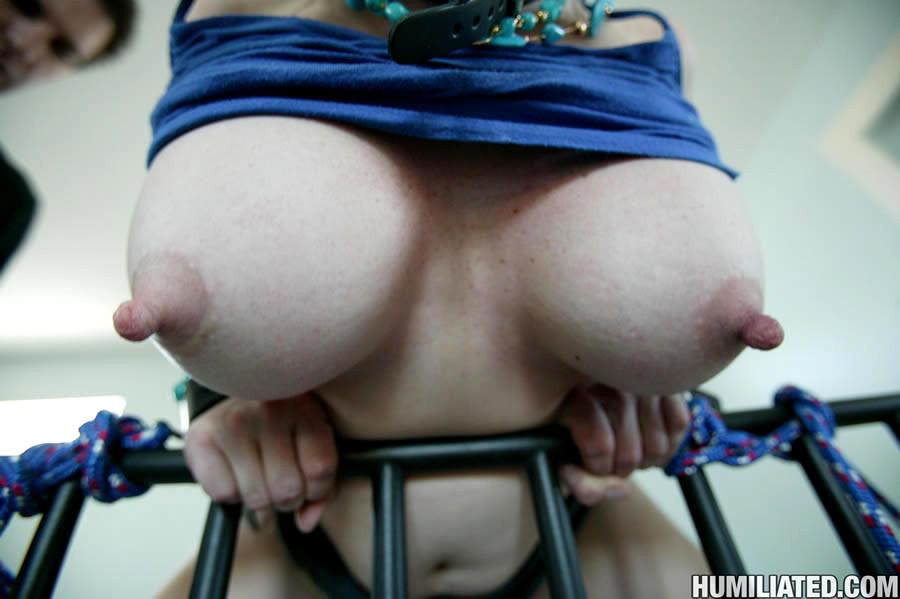 Milfhumiliation Kylie Lovit Sedutv Bondage Milf Ladies Yes Porn Pics Xxx